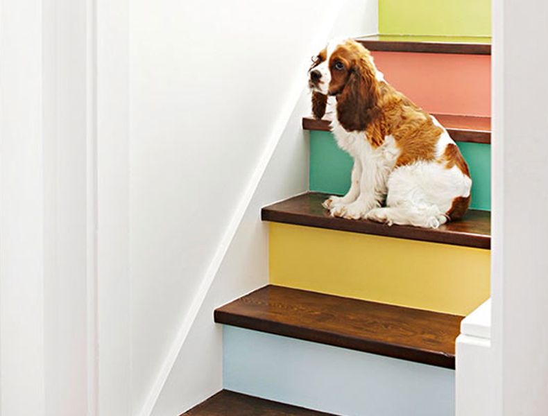 Paint the hallway steps a rainbow of colours